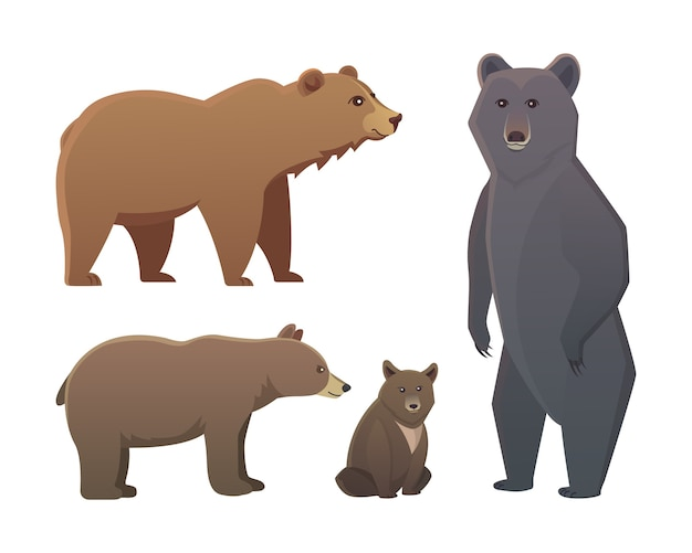 Collection with different cartoon bears isolated on white background.  broun and black american bear. set wildlife or zoo grizzly.