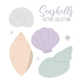 貝殻と星のコレクション