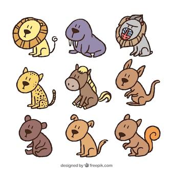 Коллекция разнообразных диких животных