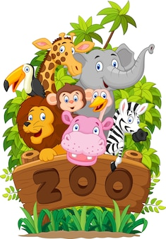 Collection of zoo animals on white background