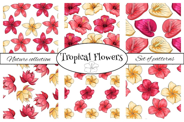 Collections of tropical patterns with exotic flowers in cartoon style. bright summer print for design and background.
