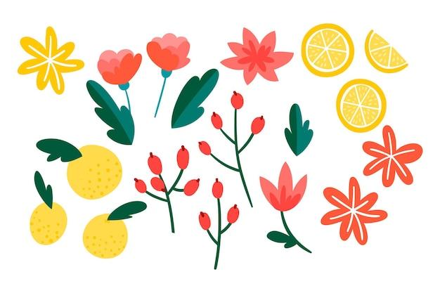 Coloful 손으로 그린 꽃 모음