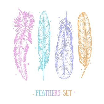 Color feathers set hand draw sketch card boho or ethnic style.