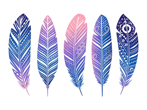 Color feathers  set. hand sketched tribal feathers isolated on white