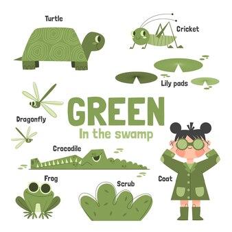 緑の色と英語で設定された語彙