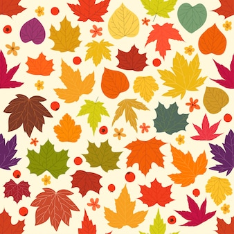 Color maple leaves seamless background