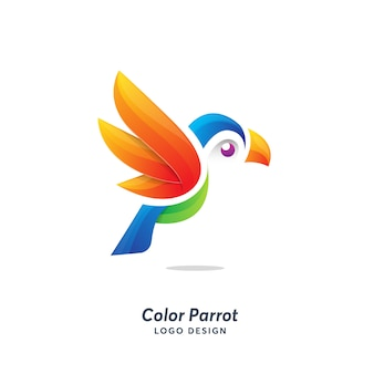 Color parrot logo template modern
