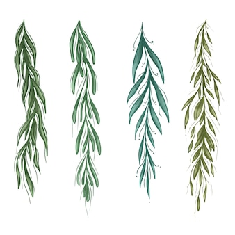 Color willow branches set collection