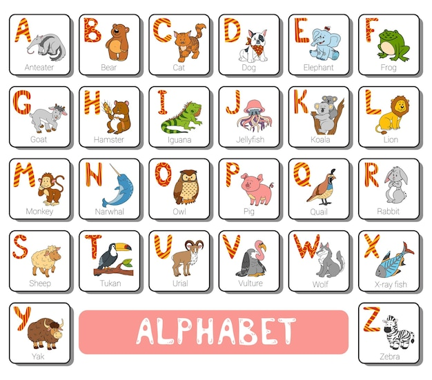 Color zoo alphabet with cute animals on white background square card with letters az