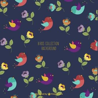 着色された鳥の背景