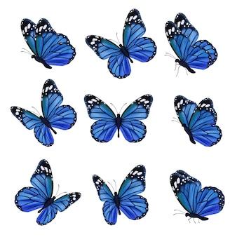 컬러 나비. 장식 된 날개를 가진 아름 다운 곤충 나비 비행. 그림 곤충 나비 봄, 패턴 현실적인 날개 블루 컬러