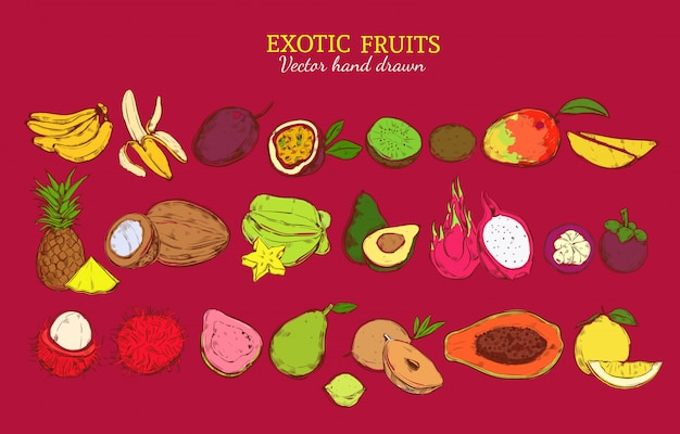 Colored exotic and tropical fruits set