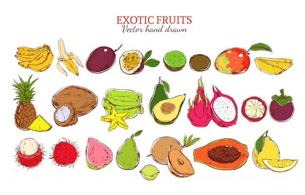 Colored fresh natural exotic fruits set