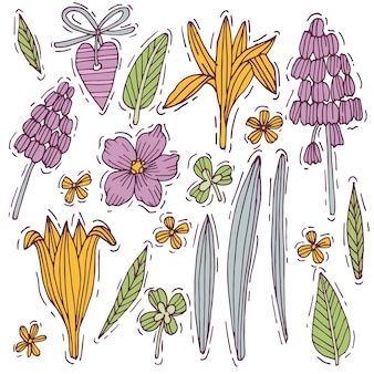 Colored hand drawn herb and flower set mouse hyacinth and crocus with violet. engraved style flowers. illustration.