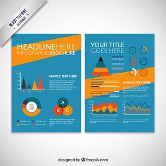 Colored infographic brochure