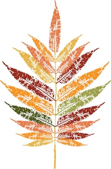 Colored ink print of a fallen autumn leaf. watercolor leaf.