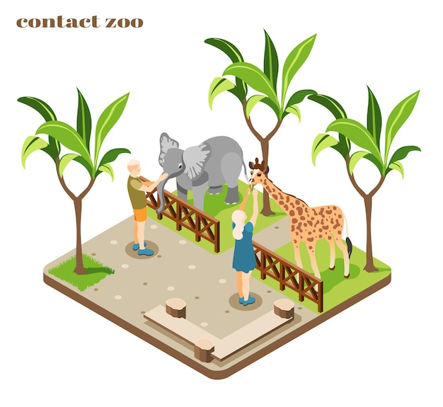 Colored and isometric contact zoo composition with staff feed elephant and giraffe