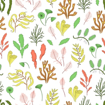 Colored seamless pattern with seaweeds