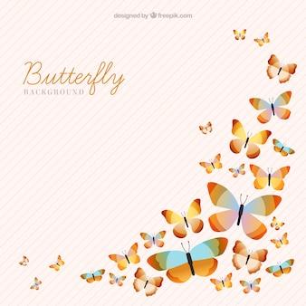 色の縞模様の蝶の背景
