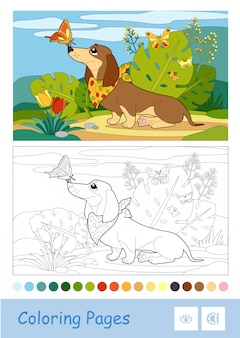 Colored template and colorless contour image of a dog playing with butterflies on a meadow. pets preschool kids coloring book  illustrations and developmental activity.