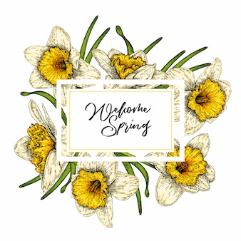 Colored vector daffodils.hand drawn spring floral banner.