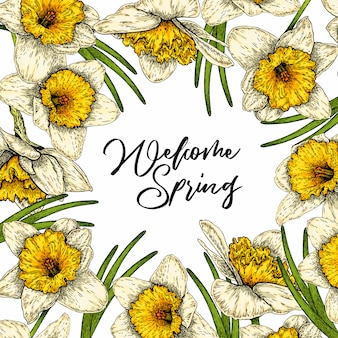 Colored vector daffodils. hand drawn spring floral banner.