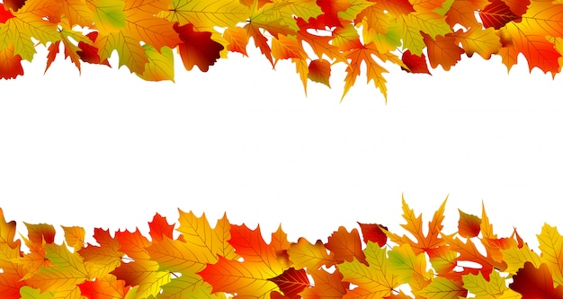 Colorful autumn border made from leaves.