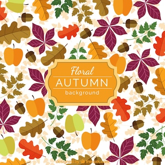 Colorful autumn floral background