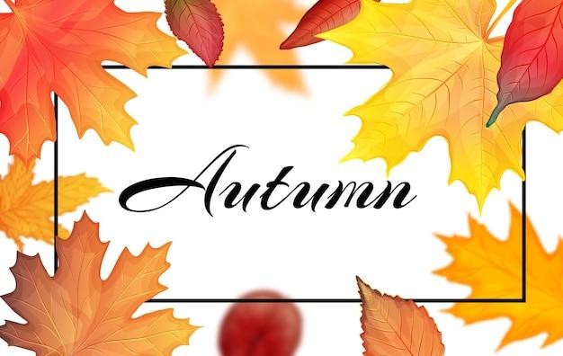 Красочная рамка осенних листьев. векторная иллюстрация