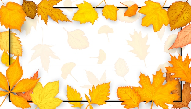Colorful autumn leaves frame.