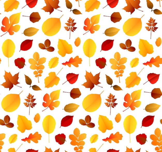 Красочные осенние листья бесшовный фон фон. векторная иллюстрация Premium векторы