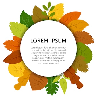 Colorful autumn leaves under white round label. vector card with yellow leaves isolated on white background