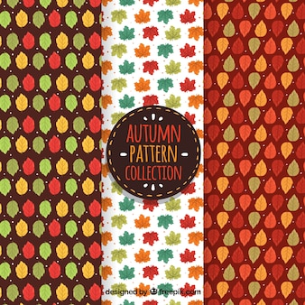 Colorful autumn pattern collection with leaves