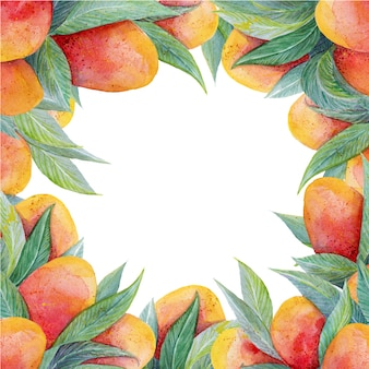Colorful background with watercolor fruits mango frame
