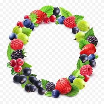 Colorful berries round set