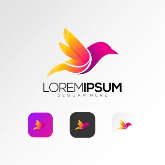 Colorful bird logo design vector