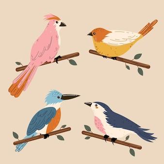 Красочная иллюстрация коллекции птиц