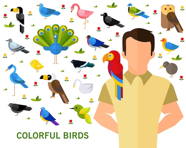 Colorful birds concept background.