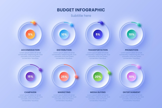 カラフルな予算のインフォグラフィック