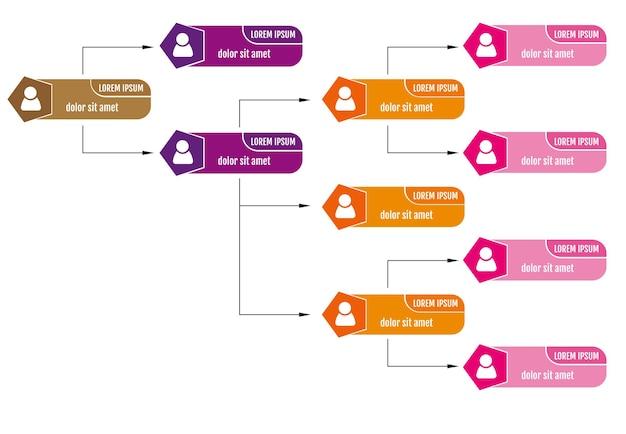 Красочная концепция структуры бизнеса, схема диаграммы корпоративной организации с иконами людей. векторная иллюстрация.