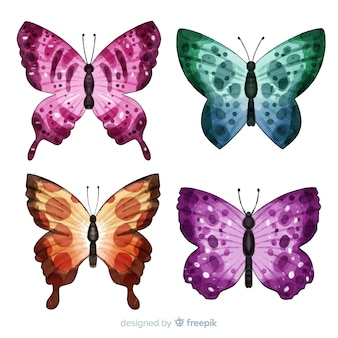 Коллекция красочных бабочек