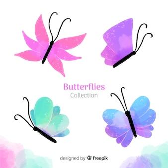 Collezione di farfalle colorate