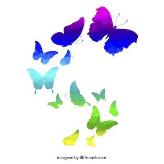다각형 스타일에 화려한 나비