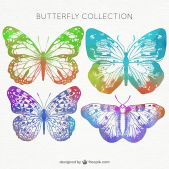 Colorful butterflies painted with watercolor