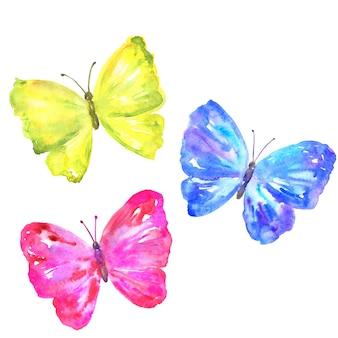 화려한 나비 : 노란색, 분홍색, 파란색. 손으로 그린 된 수채화.