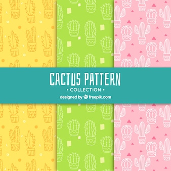 Colorful cactus patterns with fun style