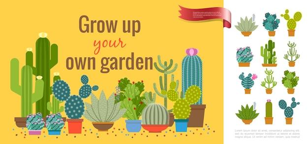 평면 스타일 일러스트에서 냄비에 성장하는 즙이 많은 식물의 다른 종류와 다채로운 선인장