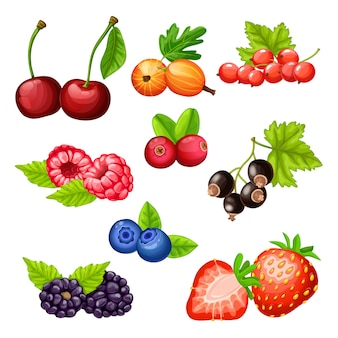 Colorful cartoon berries icons collection