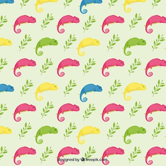 Colorful chameleon pattern