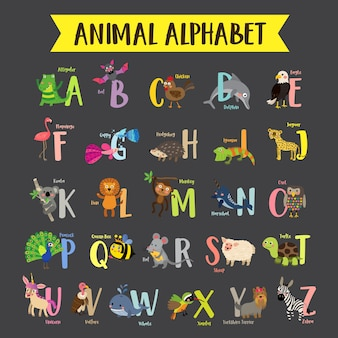 Colorful children zoo a-z alphabet